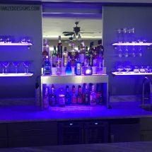 Raised Style Modern Home Bar Display